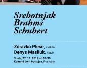 Koncert Srebotnjak, Brahms, Schubert